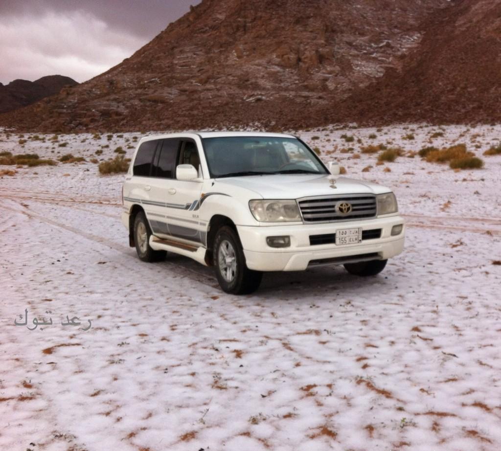 بالصور : تساقط كثيف للثلوج على جبال اللوز شمال غرب تبوك