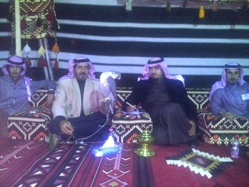 «صقر»ولي عهد قطر في مهرجان الصقور بطريف