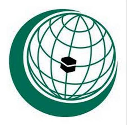 منظمة التعاون الإسلامي ترحب باتفاق السلام في جمهورية إفريقيا الوسطى