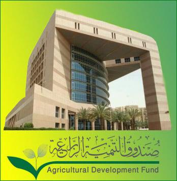 إعفاء 724 مزارعاً في تبوك من القروض