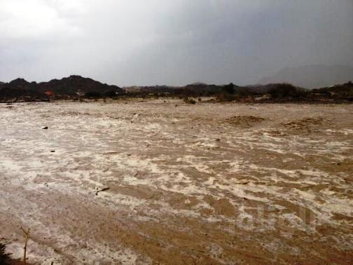 البحرين: سقوط أعلى متوسط لهطول الأمطار منذ29 عامًا