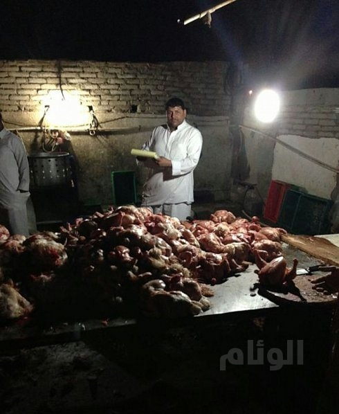 بالصور.. مداهمة منزلاً شعبياً بشرائع مكة يبيع دواجن فاسدة