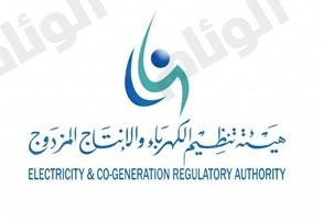 هيئة تنظيم الكهرباء توجه شركة الكهرباء بتقديم خيارات سداد مرنة للمستهلكين