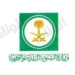 بدء العمل في «17» مدينة سعودية لتحديد الخدمات والمشروعات