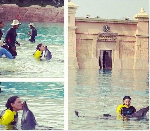 أحلام تلعب مع الدلافين وتغرقها بقبلاتها في الماء
