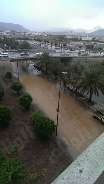 بالصور..امطار غزيرة المدينة المنورة ومحافظاتها 225.jpg