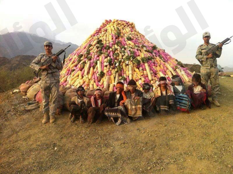 ضبط مهربين قادمين من اليمن بحوزتهم 97 كيلو «قات وشمة»
