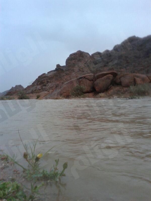 بالصور .. الأمطار تنعش حائل ومحافظاتها