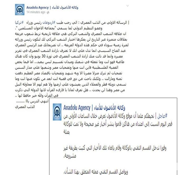 «هاكرز» مصري يخترق وكالة «الأناضول» ردا على أردوغان