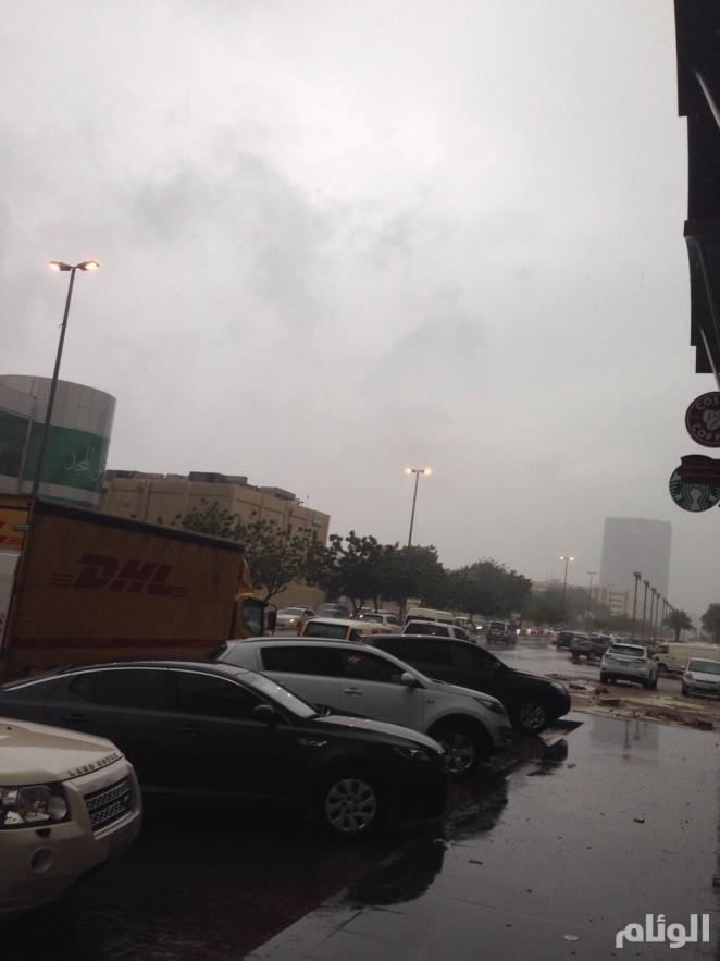 بالصور أمطار غزيرة تعرقل الحركة IMG-20141116-WA0072.