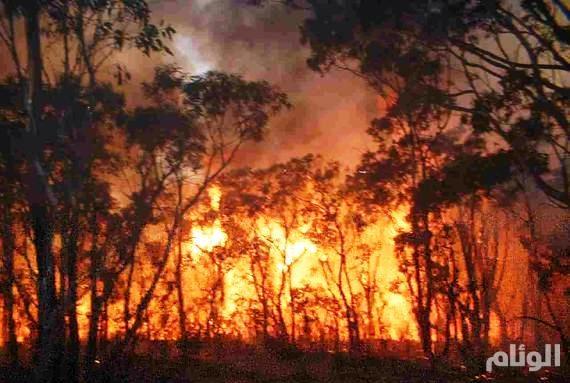 حرائق الغابات تهدد الأف المنازل في جنوب كاليفورنيا