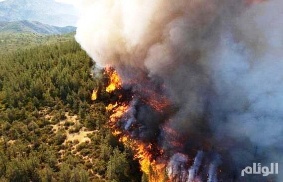 ولاية كاليفورنيا تعلن حالة الطوارئ لاتساع حرائق الغابات