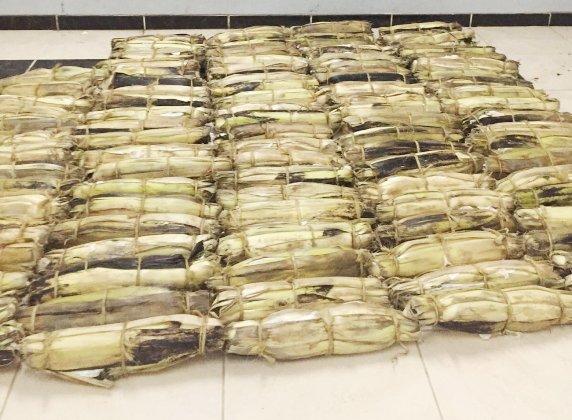 إحباط تهريب أكثر من ألف حزمة من القات المحظور بفيفا وبلغازي