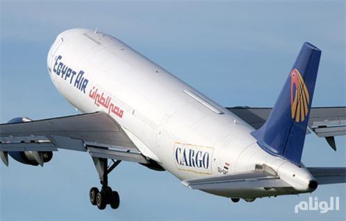 وزير الطيران المصري يصل قبرص لإعادة الركاب المحررين