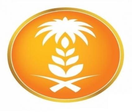 «الحبوب»تعلن آخر مستجدات الإعداد لعملية بيع شركات مطاحن الدقيق المحتملة