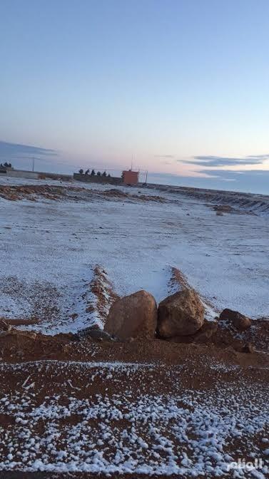 بالصور .. الثلوج تُجبر أهالي الشمالية للخروج فجراً