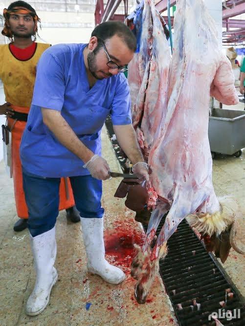 «البلديات»: ورش تدريبية لرفع مستوى الأطباء البيطريين في فحص اللحوم وكشف الوبائيات