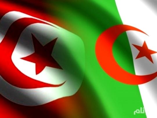الجزائر وتونس تردان على إيران.. لم نتفق معكم على شيء.. حرّفتم تصريحات مسؤولينا