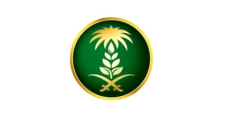"""""""البيئة"""": 95 % من خضروات وفاكهة الرياض خالية من متبقيات المبيدات (إنفوجراف)"""