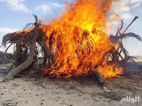 مصر: ضبط تكفيرى وتدمير 8 مخابئ للإرهابيين