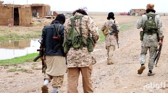 مفتي داعش سقط جنوب الموصل