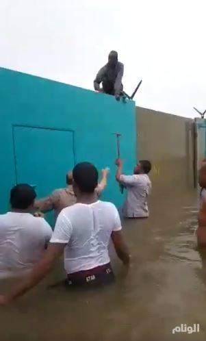 وزارة التجارة تتابع غرق سيارات في حوش وكيل تويوتا عبداللطيف جميل