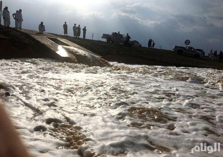 الأرصاد: إستمرار هطول الأمطار الرعدية في عدد من مناطق المملكة