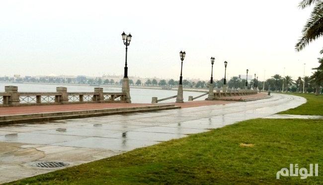 حالة الطقس: أمطار رعدية في الرياض والقصيم والشرقية