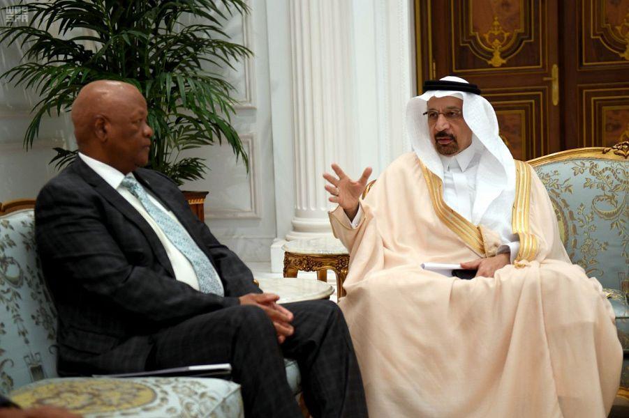 الفالح يبحث مع وزير الطاقة بجنوب أفريقيا آفاق الاستثمار في البتروكيماويات والكهرباء