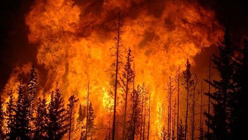 كاليفورنيا: وفاة شخص وفرار السكان بسبب حرائق الغابات