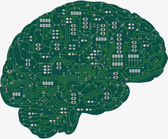 دراسة تكشف العلاقة بين الحر والذكاء