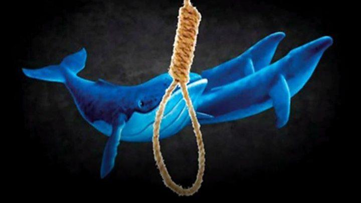 متأثرة بالحوت الأزرق.. إنتحار فتاة شنقاً في المدينة