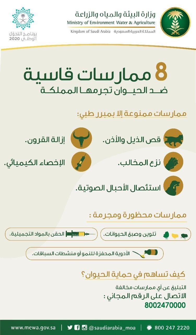 «البيئة» تحظر الإخصاء وقص الذيل وإزالة القرون للحيوانات