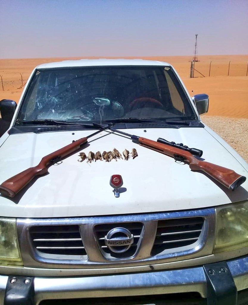 ضبط أشخاص قاموا بالصيد دون تصريح في محمية الإمام تركي بن عبدالله