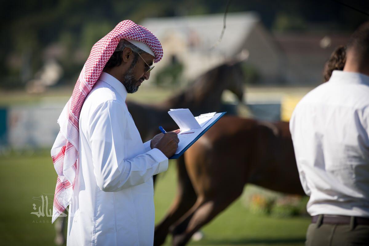 الدغيلبي حكما لبطولة كأس العالم لجمال الخيل العربية الأصيلة