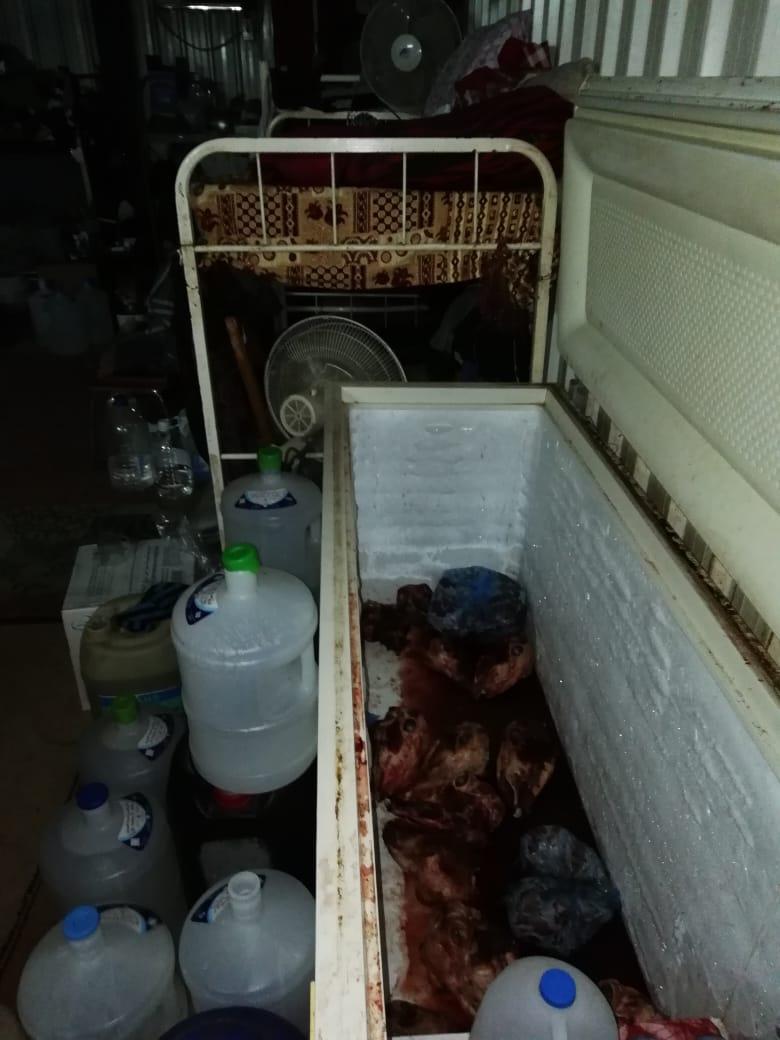 ضبط 2300 كيلو لحوم فاسدة بمنطقة سوق الأغنام بمكة