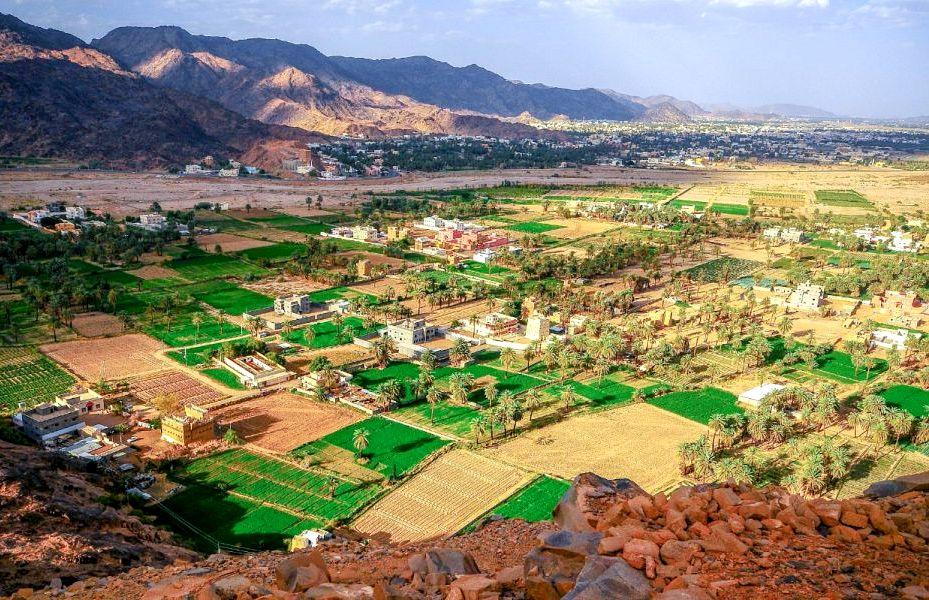 شاهد: صور لجمال الطبيعة النجرانية من قمة جبل رعوم