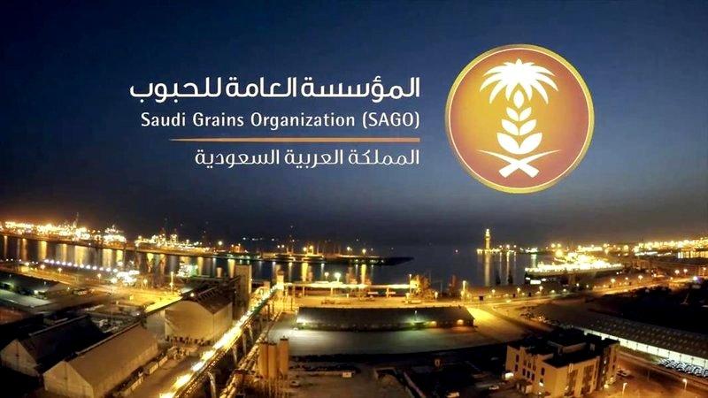السعودية تطرح مناقصة عالمية لاستيراد مليون طن شعير علفي