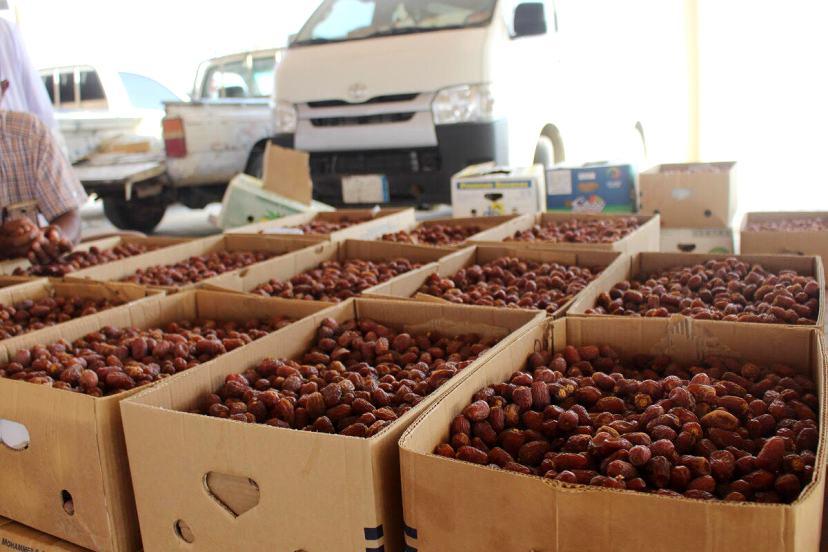 شاهد: وادي الدواسرتصدر أكثر من 31 ألف طناً من التمور