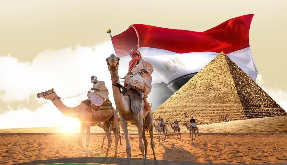 مصر تشارك بمهرجان ولي العهد للهجن بـ18 مطية