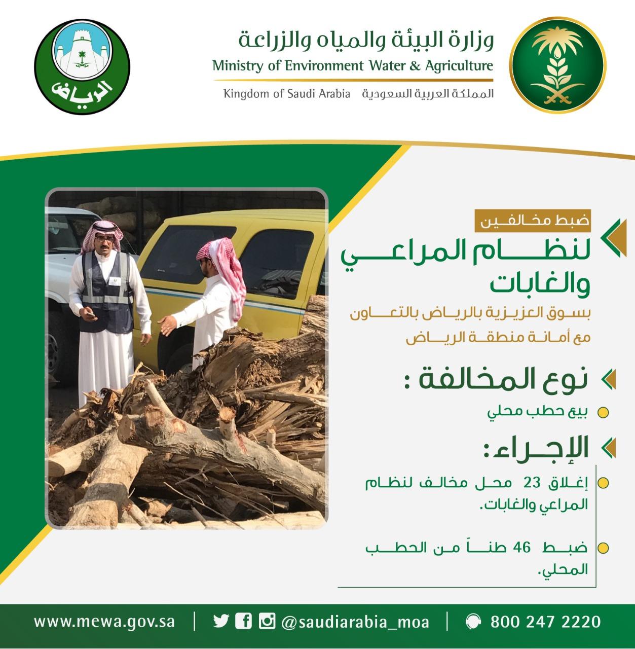 قبل قدوم الشتاء.. البيئة تضبط 46 طن حطب بأسواق الرياض