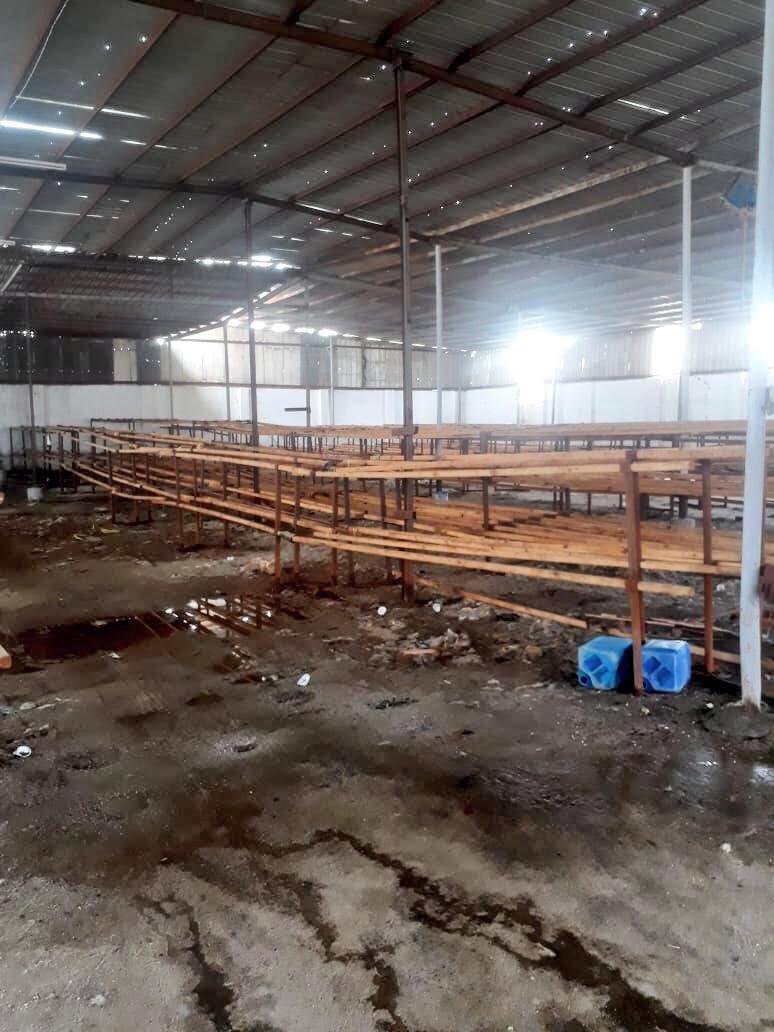 شاهد.. إغلاق مصنع عشوائي مخالف في الشميسي