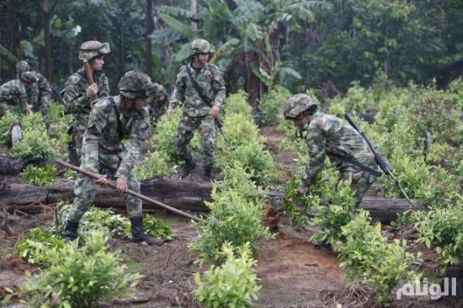 شاهد: حرب المخدرات في كولومبيا