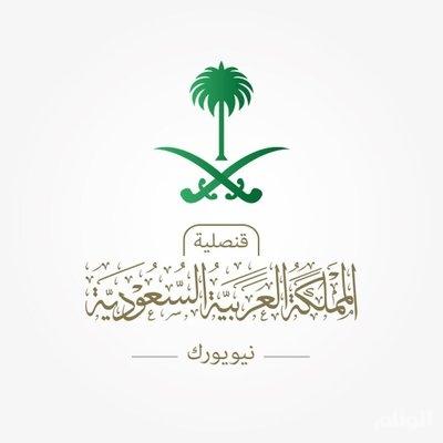 القنصلية السعودية في نيويورك تصدر بيانا بشأن اختفاء مفقود شلالات نياجرا