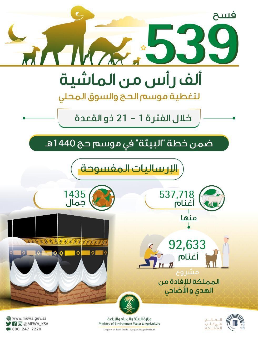 """""""البيئة"""": فسح 539 ألف رأس من الماشية منذ مطلع ذي القعدة"""