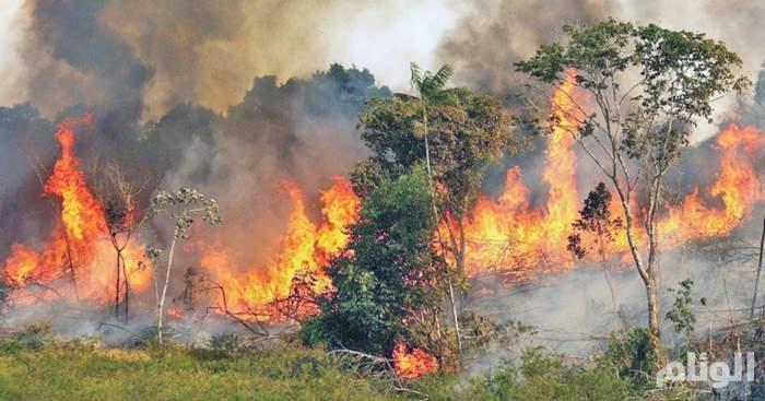 """""""رئة الأرض"""" تحترق.. وتحذيرات من كارثة للعالم"""