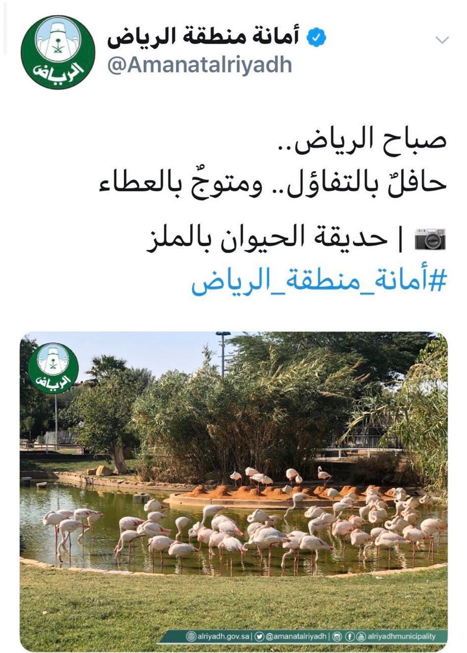 امانه منطقه الرياض